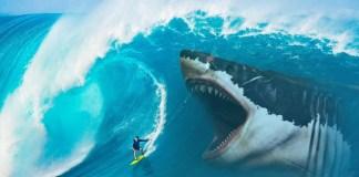 Traje de surf resistente a mordeduras de tiburón