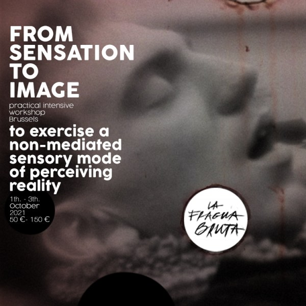 FROM SENSATION TO IMAGE