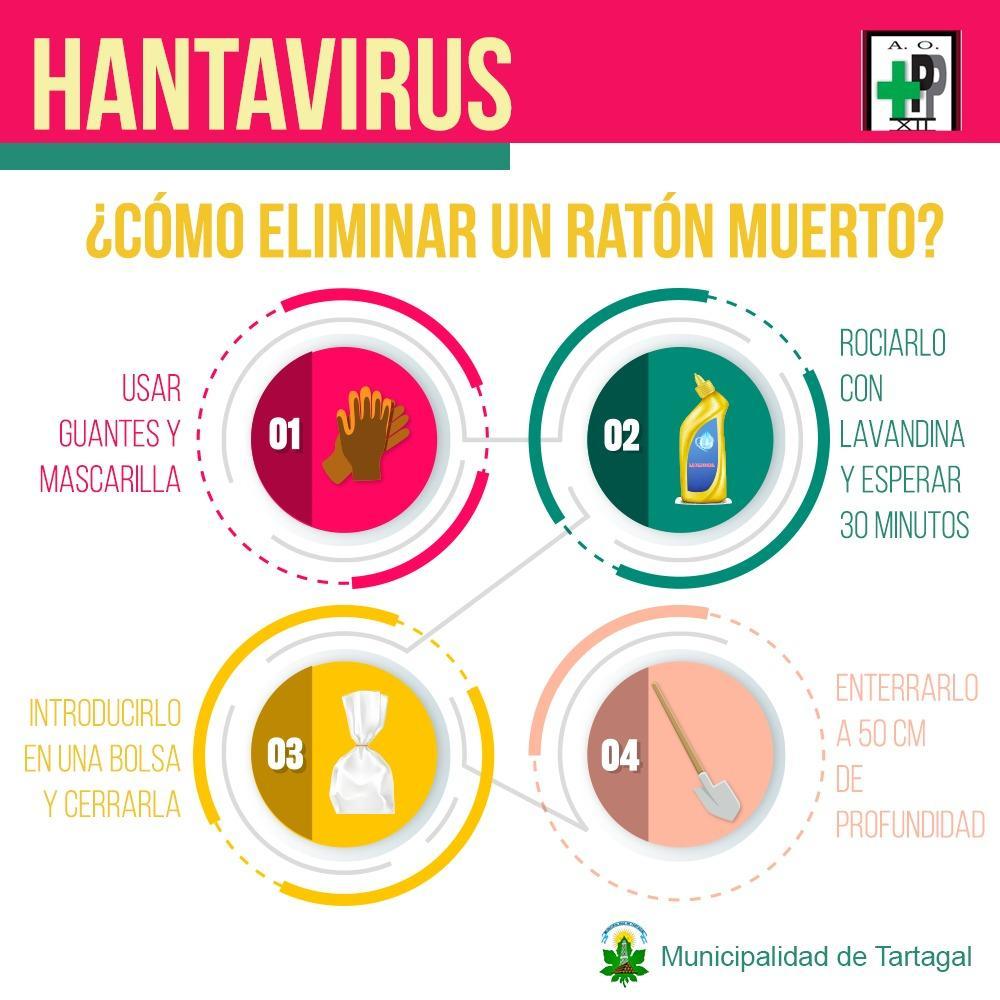Hantavirus: confirman dos casos en Salta, uno mortal - LA GACETA Salta