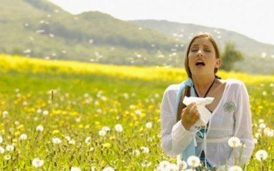 Consejos para la prevención de la alergia primaveral
