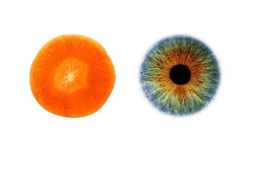 Alimentos sanos para tus ojos -portada
