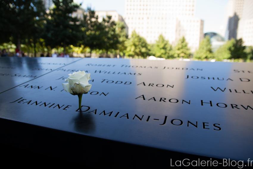 une fleur dans le monument commemoratif du 11 septembre