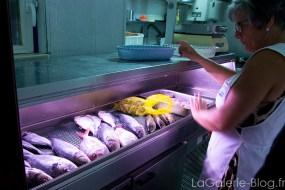 Le choix de poissons au Mar d'Areira
