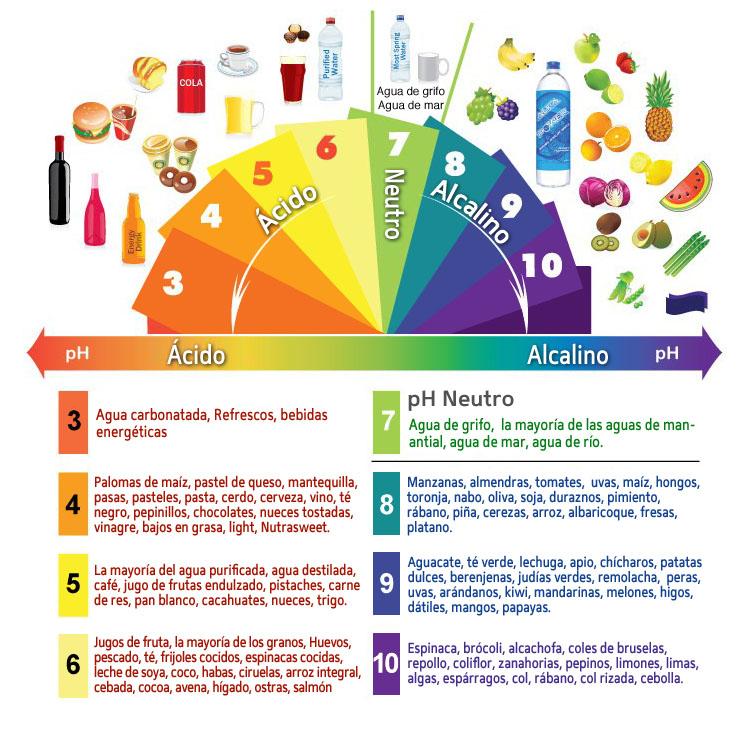 Resultado de imagen de alimentos ácidos y básicos