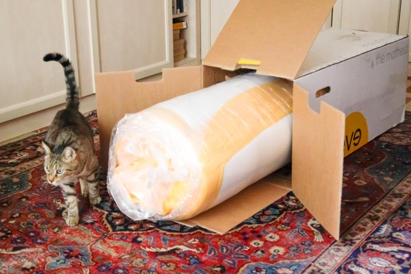 Il mio nuovo materasso di design EveSleep  La gatta sul tetto