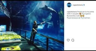 Tania Cagnotto su Instagram per Spongebob