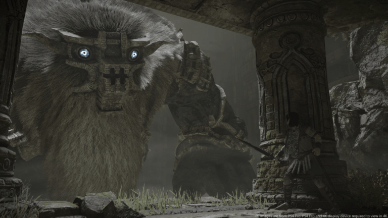 Shadow Of The Colossus hunting Barba