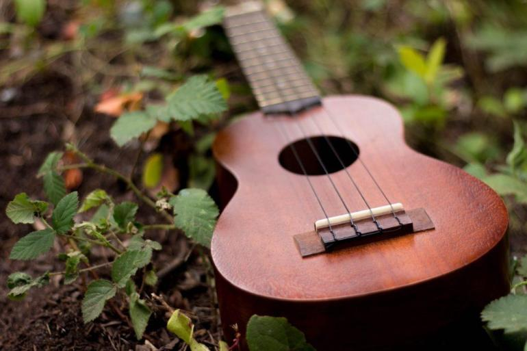 rushina-morrison-329093-unsplash-music-guitare-herbe-verte-green-grass