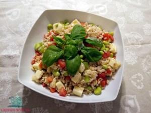 7 piatti unici con l'insalata di orzo preparata da L'Agenda di mamma Bea