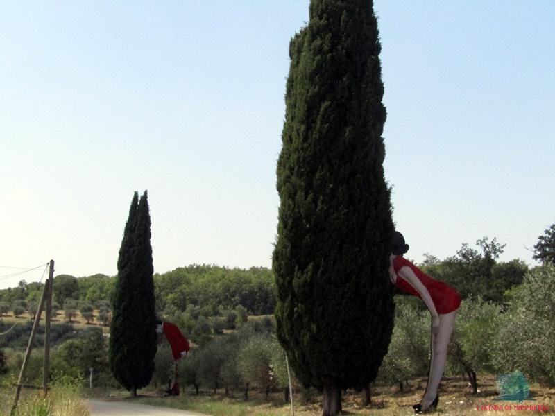 cipressi della natura in Toscana su L'Agenda di mamma Bea