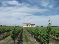 Bauernhof Anna Caterina Castelnuovo Del Garda Gardasee ...