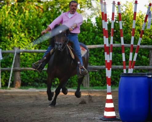 Passeggiate a cavallo sul lago Maggiore