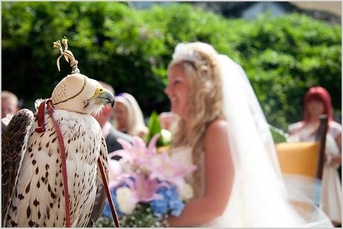 matrimonio-con-falco-porta-anelli-sposi