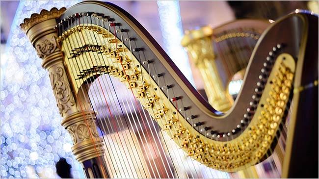 arpa-musica-classica-cerimonia-lago-maggiore
