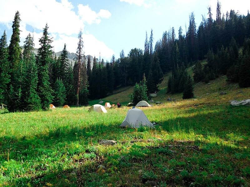 Several tents in a meadow.