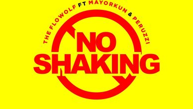The Flowolf Ft. Mayorkun & Peruzzi - No Shaking