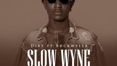 Dixy - Slow Wyne Ft. Buckwylla