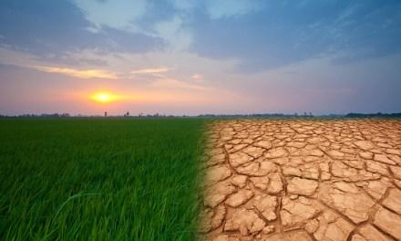 C pour Climat (réchauffement climatique)