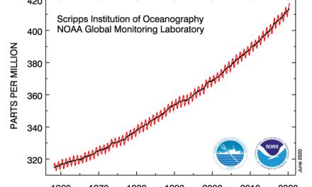 """Les scientifiques estiment que la crise des coronavirus a eu peu d'impact sur la tendance générale de la concentration de <span class=""""caps"""">CO2</span>"""