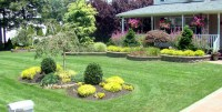 What are some good backyard landscaping ideas?