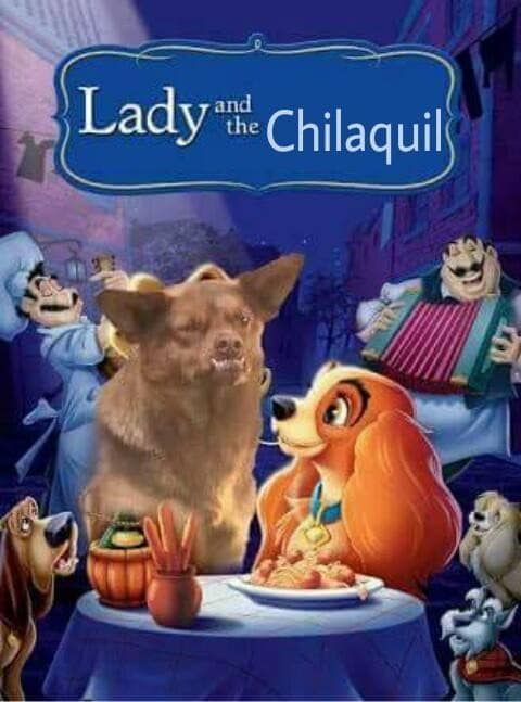 20 memes del Chilaquil y su historia el perro ms feo