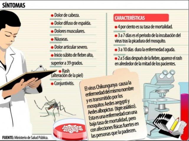 chikungunya-sintomas-tratamiento-y-prevencion