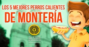 Los 5 mejores perros calientes en Montería