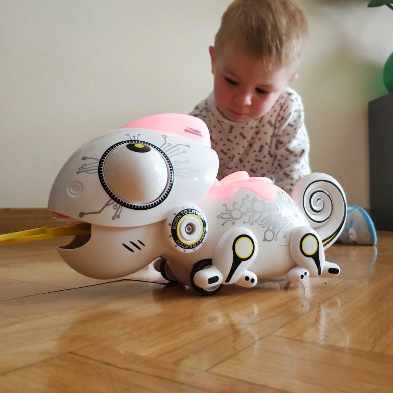 Robot Camaleón LGDL (2)