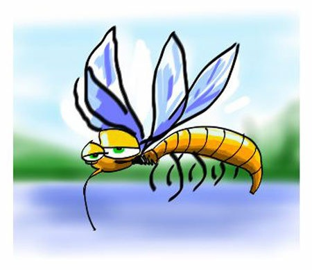 moustique2