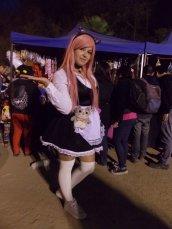 FAN_VIÑA_2015_DOMINGO (252)