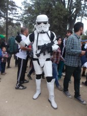 FAN_VIÑA_2015_DOMINGO (5)