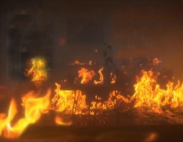 ملت پارک گھر میں آگ
