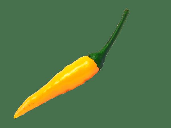chili-4656603_1920