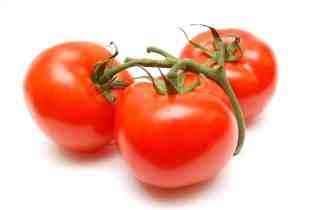 Top 5 Combate a la polilla del tomate o Tuta