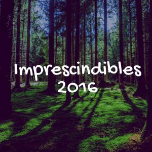 Los 10 Imprescindibles Que Debemos Hacer De 2016