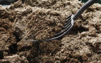 Que Nutrientes Aporta Cada Estiércol A Nuestras Plantas