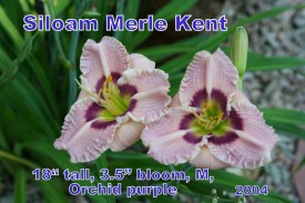 Siloam Merle Kent