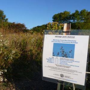 Montrose Point Bird Sanctuary @ Montrose Point Bird Sanctuary | Chicago | Illinois | United States