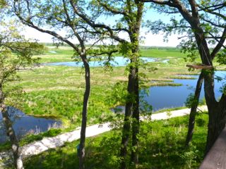 Glacial Park Overlooking Nippersink River