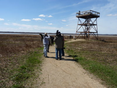 Dixon Waterfowl Refuge at Hennepin Hopper Lakes