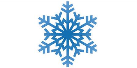 This image has an empty alt attribute; its file name is snowflake-pic-for-website.jpg