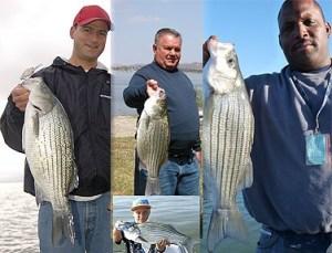 Lake Elsinore Fishing