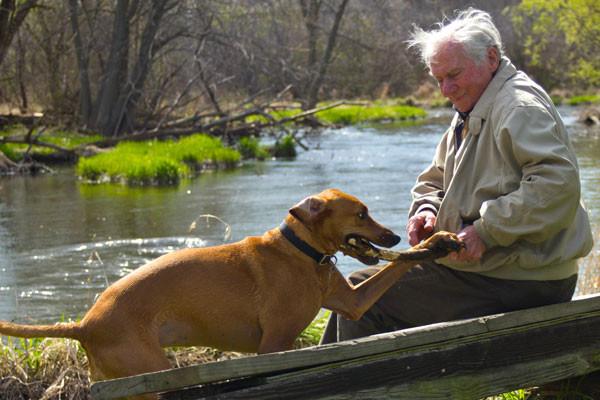a boy on his dog