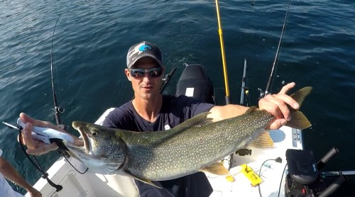 small resolution of 4th of july recap from justy joe sportfishing charters