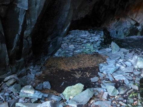Millican Dalton's bed of bracken, Castle Crag