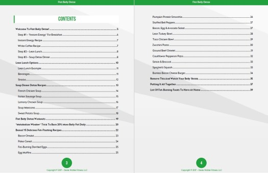Flat Belly Detox Table of Contents