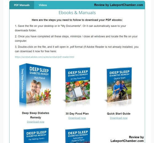 Deep Sleep Diabetes Remedy Download Page