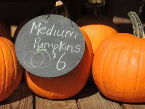 LRRTC Fall Jubilee pumpkins