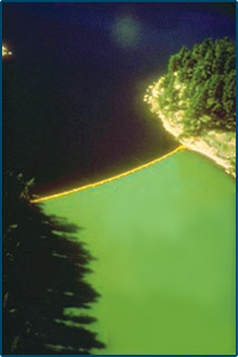 scientists used a curtain to separate two sides of a Canadian Lake. Carbon and nitrogen were added to both sides while phosphorus was added to only one side. A large algal bloom and consequent eutrophication is visually evident on the side where carbon, nitrogen, and phosphorus were added.