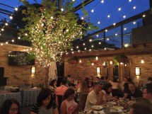Patios In Chicago - Lake Shore Lady